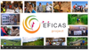 Video on EFICAS project activities in Luang Prabang Province